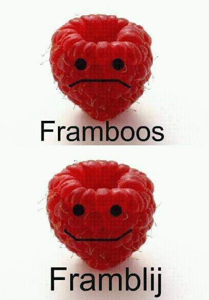 framboos grappig plaatje